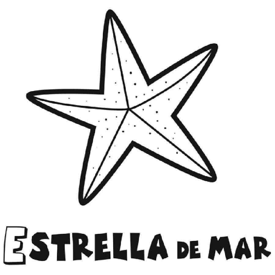 Dibujo para niños de una estrella de mar