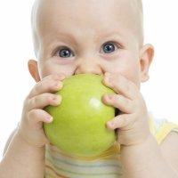 Alimentación de primavera para niños