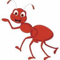 Cuento infantil. Selena, la hormiga