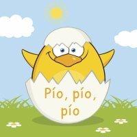 El huevo que pía. Cuentos para niños