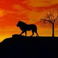 El león enfermo y los zorros. Fábulas de La Fontaine