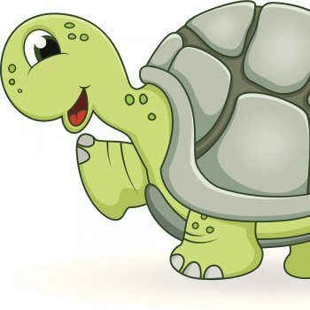 La tortuga desobediente