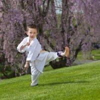 Beneficios del karate infantil