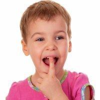 Rotura de dientes. Entrevista a Gustavo Camañas