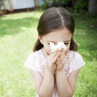 Causas del asma infantil: los alérgenos