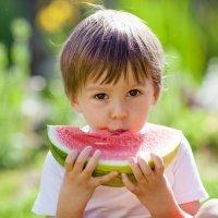 Alimentación de verano para los niños