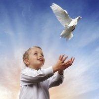 Educación por la Paz