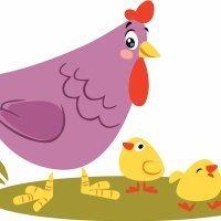 La gallinita colorada y sus pis-pollitos