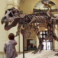 Los mejores museos del mundo para niños