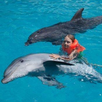 Terapias con delfines para niños con discapacidad
