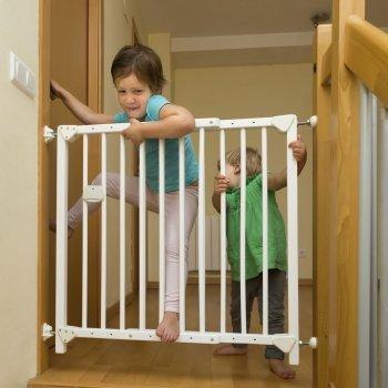 Problemas de conducta del niño adoptado