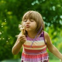 Cómo enseñar a los niños cuál es el ciclo de una planta
