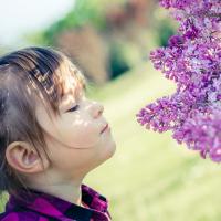 Cómo ayudar a concentrarse al niño con aromaterapia