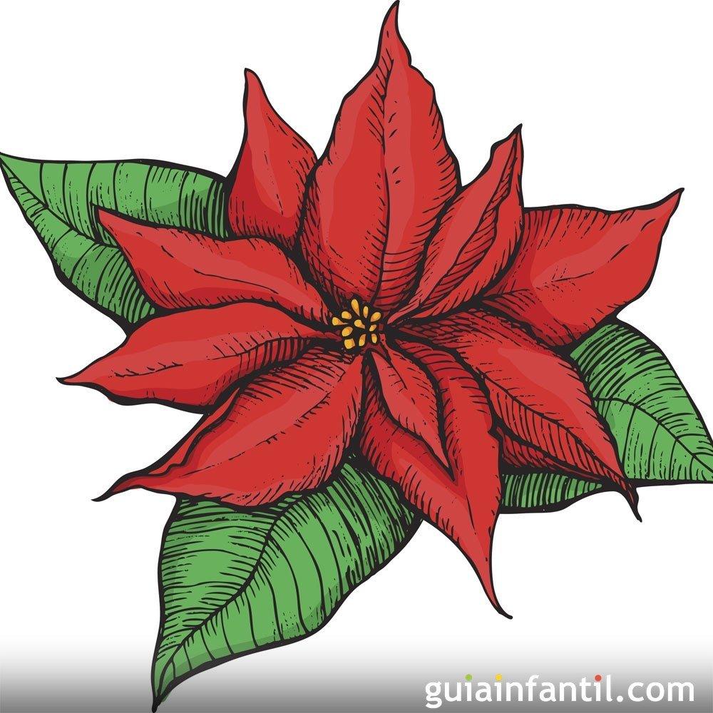 La Flor De Nochebuena Leyenda Navideña De México