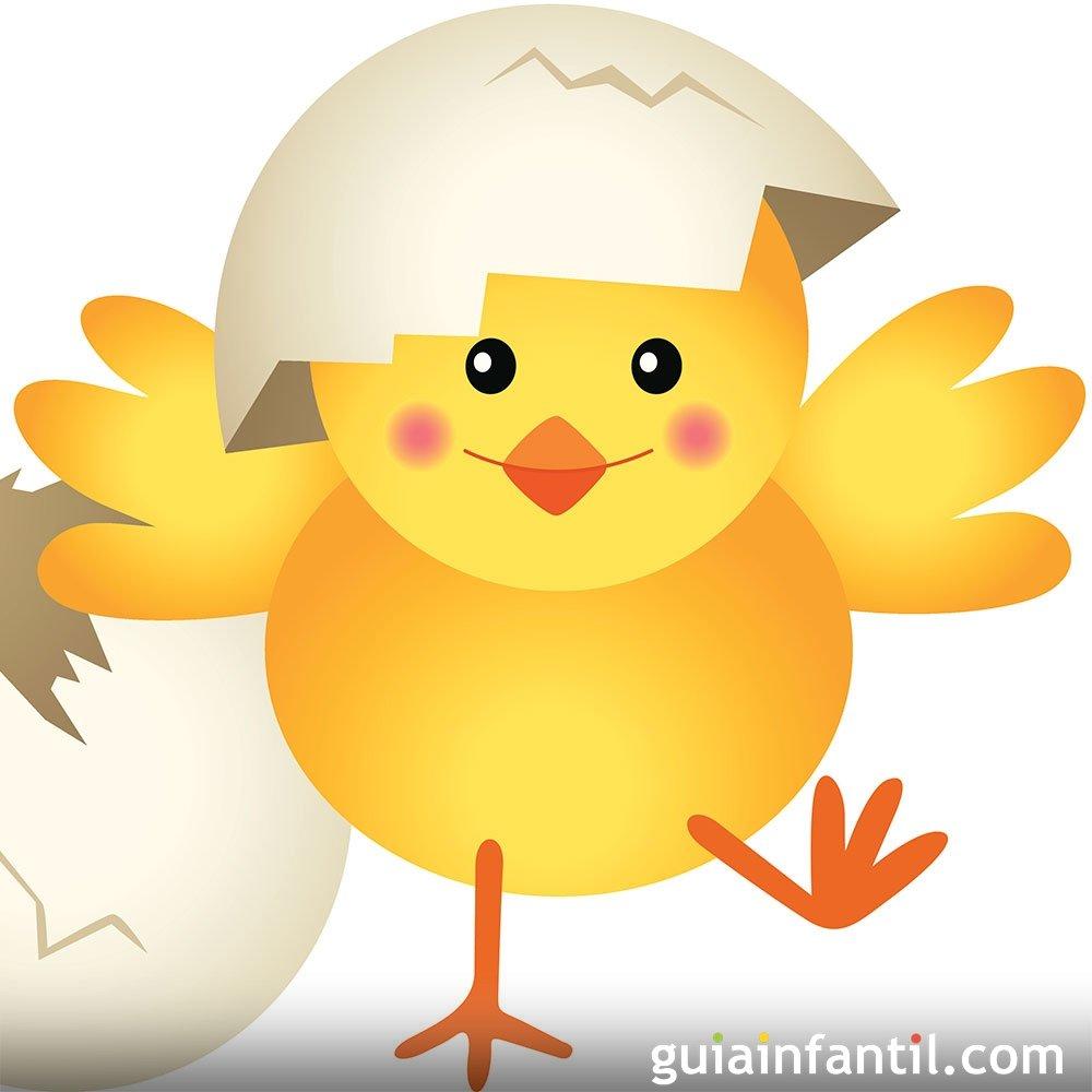 Un pollito llamado Llito. Cuentos para niños