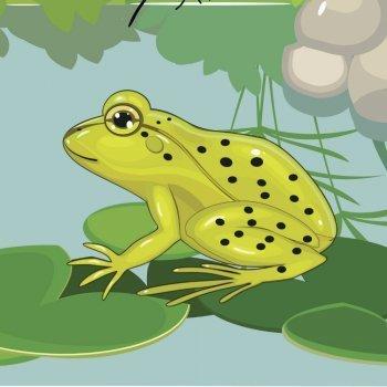 Cucu cantaba la rana