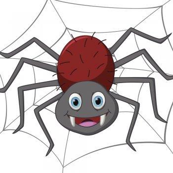 La pequeña araña