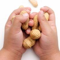 Alimentos desaconsejados para bebés