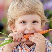 Alimentos que curan a los niños. Enfermedades respiratorias