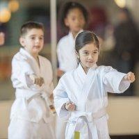 Qué es el Taekwondo