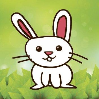 Cómo dibujar a un conejo