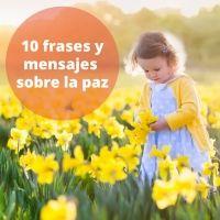 10 frases de paz. Mensajes de paz para los niños