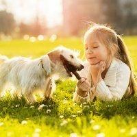 Acertijos de animales para niños