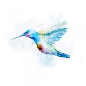Leyenda Maya. El colibrí
