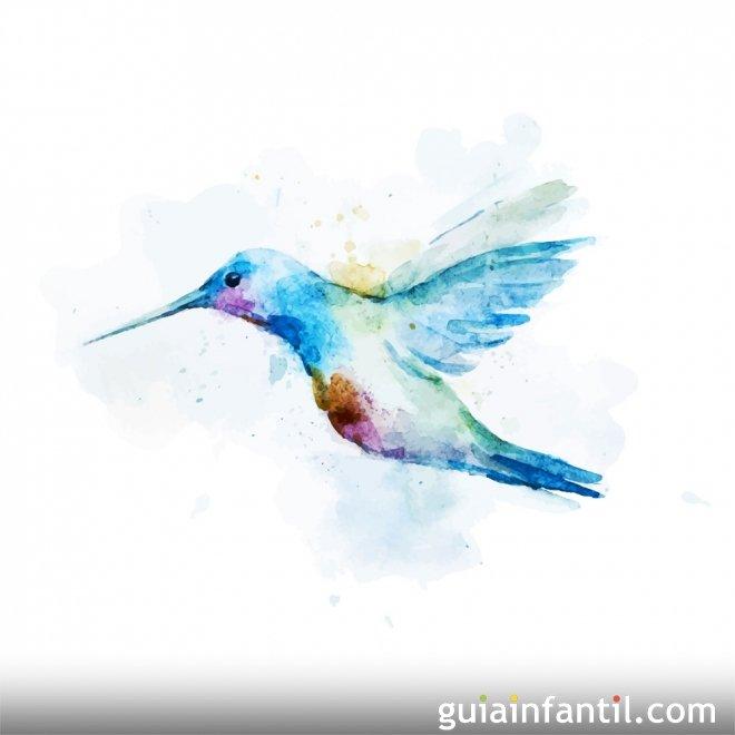 El colibrí. Leyenda maya para niños