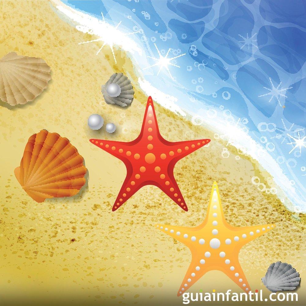 Las Estrellas De Mar Cuento Corto Para Niños