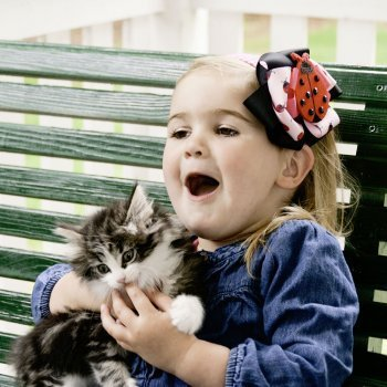 Cómo curar mordeduras de animales en los niños