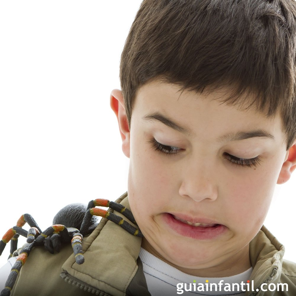 Curar picaduras de araña en los niños