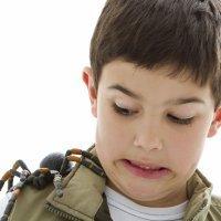 10 trucos para curar picaduras de araña en los niños