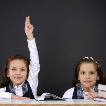 Separar a los gemelos en el colegio: ¿sí o no?