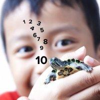La técnica de la tortuga para evitar rabietas en los niños