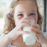 Leches alternativas a la leche de vaca para los niños