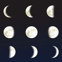 Las fases de la luna. Poemas didácticas infantiles