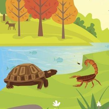 El escorpión y la tortuga