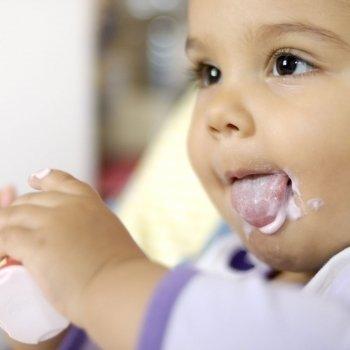 Yogures y otros postres lácteos, ¿cuáles son los más recomendables?