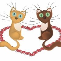 Los dos gatitos. Poema solidario para niños