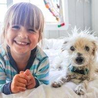 Cómo enseñar a tu hijo a cuidar de su mascota