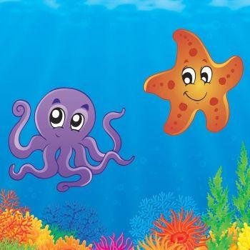 Estrella de mar. Cuento infantil sobre la aceptación personal