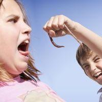Miedo a los insectos en los niños