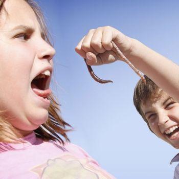 El miedo de los niños a los insectos