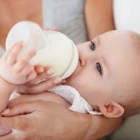 Aceite de palma en las leches de fórmula infantiles