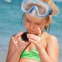 Picaduras en el mar a los niños, ¿cómo actuar en cada caso?