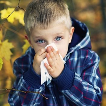 Diferenciar un catarro de una alergia