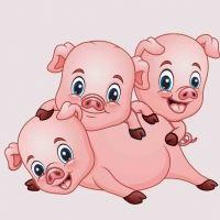 Los tres cochinitos. Canción de Cri Cri para los niños