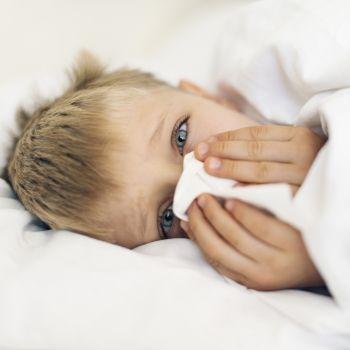 Remedios naturales para despejar la nariz de los niños