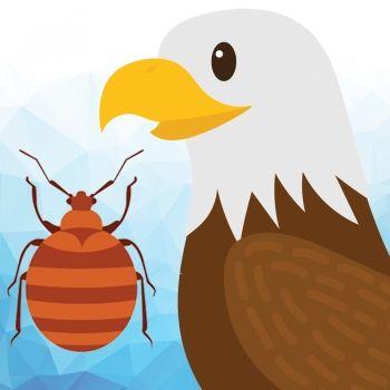 El águila y el escarabajo